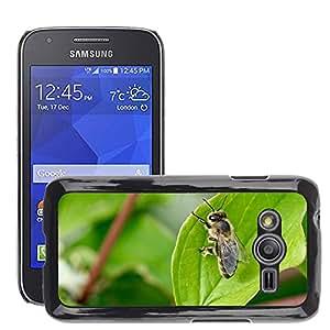 Etui Housse Coque de Protection Cover Rigide pour // M00134591 Naturaleza Hoja Insecto Abeja // Samsung Galaxy Ace4 / Galaxy Ace 4 LTE / SM-G313F