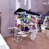 European-style Iron Flower Rack Multi-storey Flower Racks Shopping Malls Decoration-A