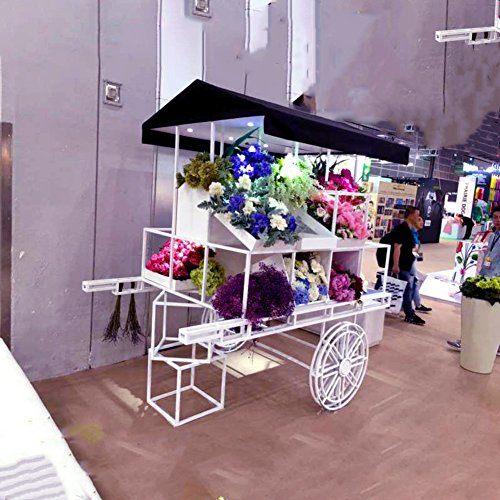 European-style Iron Flower Rack Multi-storey Flower Racks Shopping Malls Decoration-A by Flower racks