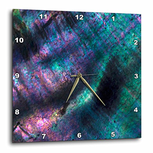 3dRose Danita Delimont - Abstracts - USA, California. Abalone shell close up. - 15x15 Wall Clock (dpp_278506_3) ()