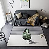 Black Series Home Rugs Popular - Crystal Plush Ultra Soft Cartoon Anti-slipping Rugs Room Decoration 57 X 77 Inch