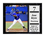 Encore Select 520-61 MLB Toronto Blue Jays Jose Reyes Stat Plaque with Photo, 12-Inch by 15-Inch