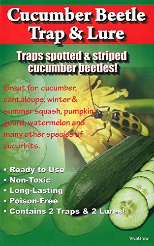 VivaTrap! Cucumber Beetle Trap with Multi Pheromone Lure (2 Pack)