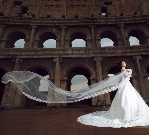 Loveshop 1 Layer Tulle Scalloped Edge Wedding Bridal Veil with Applique 5.0 meter-white