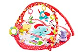 Fisher-Price Sensory Gym, Sweetheart
