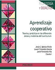 Aprendizaje cooperativo: Teoría y práctica en las diferentes áreas y materias del curriculum (Psicología)