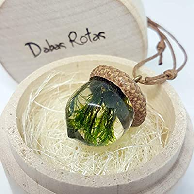 Dabas Rotas Latvian Jewelry Gift, Handmade Unique Necklace with Real Acorn Cup Holding a Miniature Moss Plant Set in 100 Percent Eco-Friendly Resin