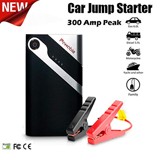 Ljnuanrg 6000mAh Car Emergency Power Supply,Portable Auto Battery Jump Starter Bolt Power K10 12V 300A Peak,Operating Temperature -20℃-60℃,Up to 1000 Cycle Life (As Shown)