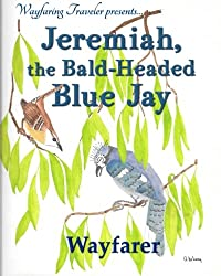 Jeremiah, the Bald-Headed Blue Jay
