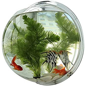 Amazon Com Funnuf Wall Mounted Acrylic Fish Bowl Bubble