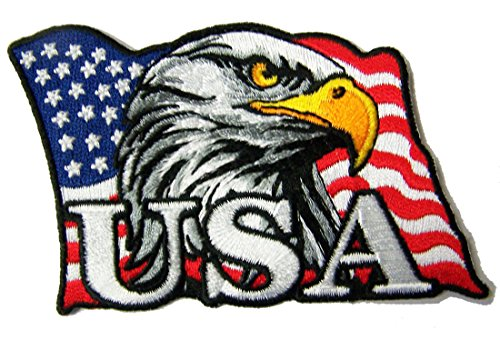 USA American Flag Eagle Head Novelty Embroidered 4 Inch Jacket Patch - Iron on Backing or Sew On