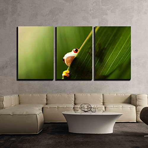wall26 - 3 Piece Canvas Wall Art - Frog Shadow on the Leaf -