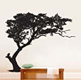 "Stickerbrand© Nature Vinyl Wall Art Tree Shade Wall Decal Stickers - Multiple Colors Available, 72"" x 85"" (6 ft. Tall). Easy to Apply & Removable. Includes FREE Application Squeegee"
