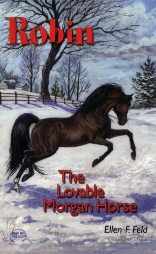 Robin: The Lovable Morgan Horse