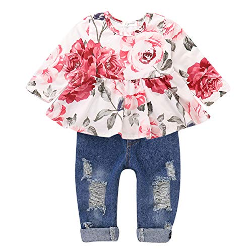 CARETOO Girls Clothes Outfits, Cute Baby Girl Floral Long Sleeve Pant Set Flower Ruffle Top Pink