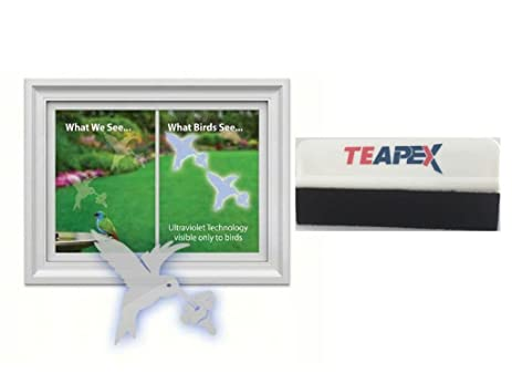Amazoncom Window Alert Hummingbird Decal Includes Teapex Brand - Window alert decals amazon