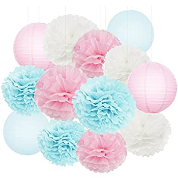 Gender Reveal Party Decorations Boy Or Girl Baby Shower Decorations Baby  Blue Pink Tissue Paper Pom Pom Flowers Paper Lanterns For Birthday/Pink And  Blue ...