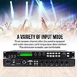 Depusheng X5 Karaoke Professional Digital Audio