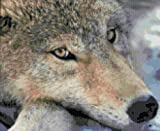 A Wolf Face Counted Cross Stitch Kit