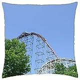 Roller coaster Dorney Park / CompanyPicnic - Throw Pillow Cover Case (16 offers