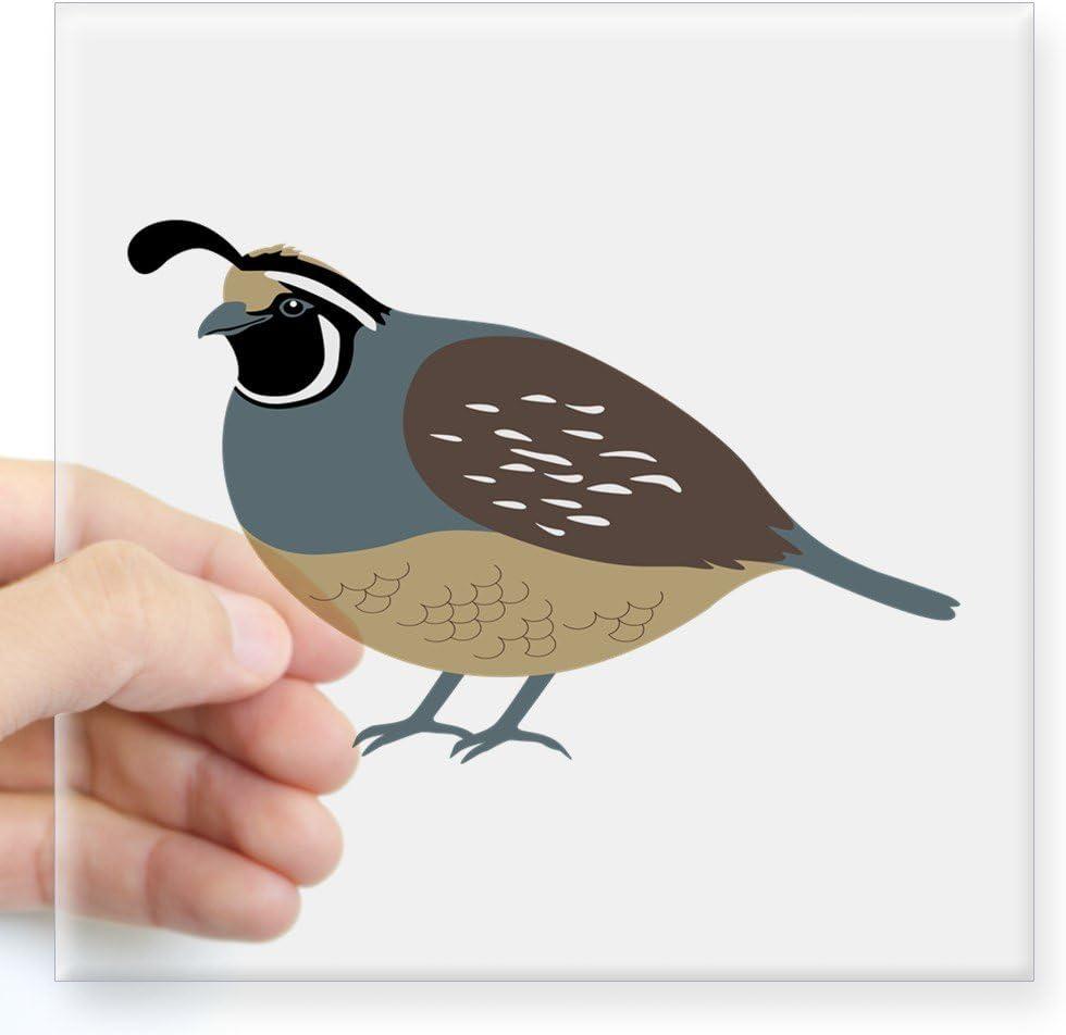 Quail Bird Art Decal Bumper Vinyl Sticker