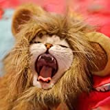 Namsan Lion Mane Cats - Pet Dog Cat Halloween Costumes Cats Small Dogs