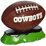 Pets First NFL Dallas Cowboys Football Aquarium Tank Ornament