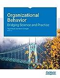 ORGANIZATIONAL BEHAVIOR: Bridging Science and Practice