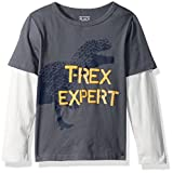 The Children's Place Baby Boys' Long Sleeve Fashion T-Shirt, Grey 83063, 3T