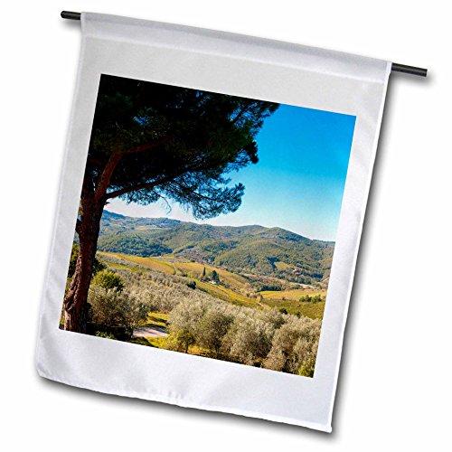 In Greve Chianti Tuscany (3dRose Danita Delimont - Tuscany - Vineyards and olive groves, Greve in Chianti, Tuscany, Italy - 12 x 18 inch Garden Flag (fl_249328_1))