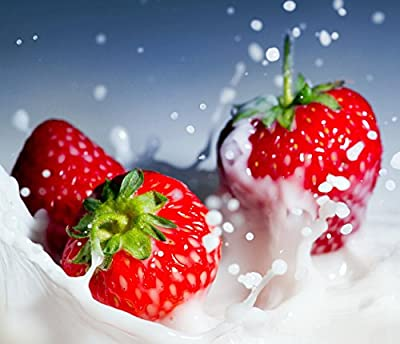 Tristar Everbearing Strawberry 25 Bare Root Plants - Sweetest & Most Aromatic