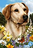 Yellow Labrador – Best of Breed Summer Flowers Large Flags For Sale
