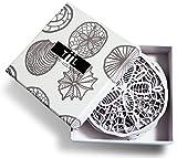 Drink Untersetzer von TiIL. seashell-inspired Designer Untersetzer Set von 6Plus Geschenk-Box, weiß