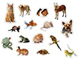 Pets: Photographic