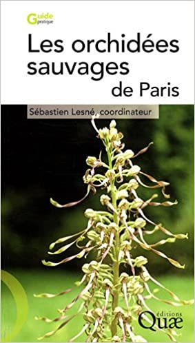 orchidee sauvage paris