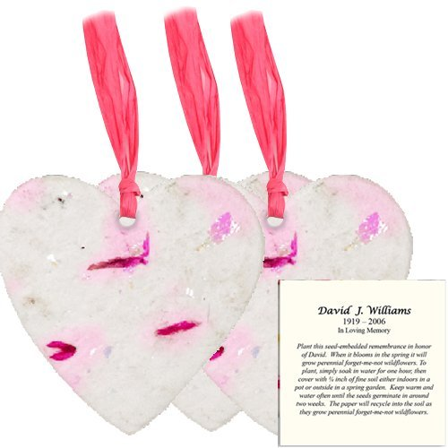 Large Plantable Memorial Shapes With Personalized Instructions Card (Heart) by Passages International