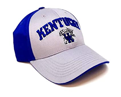 42da5a8220039 Image Unavailable. Image not available for. Color  NCAA Kentucky Wildcats  Sonic Adjustable Hat