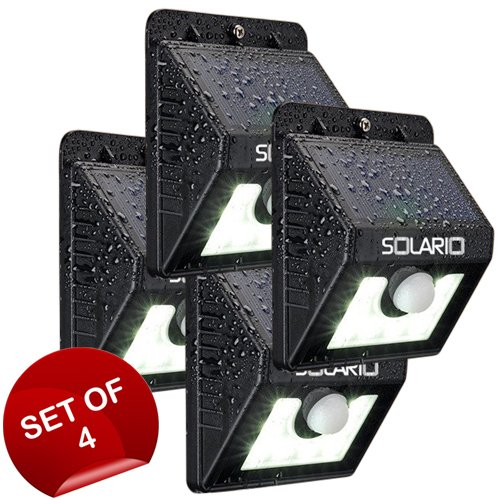 Cattail Solar Lights - 9