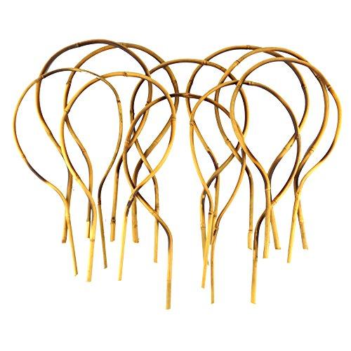 16 in.Bamboo Loop Stakes (10 Pack)