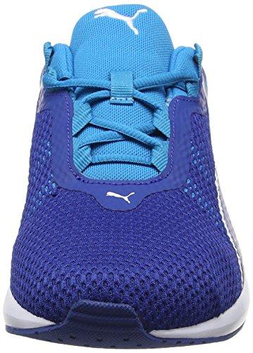 Homme Compétition Danube 2 Running Bleu Blue blue De 01 Chaussures Flare true Puma wYSqxfOY