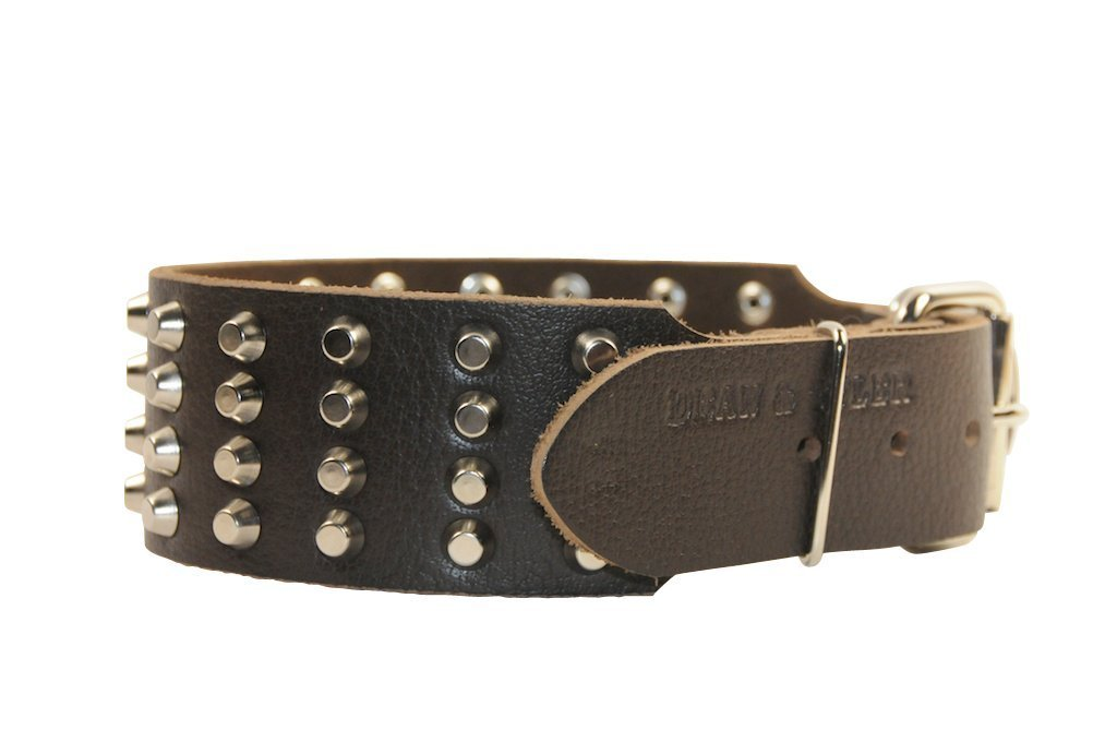 Dean & Tyler Leather Dog Collar ''4 Row Studs'' Brown - 30'' By 2 1/4'' Width. Will Fit Neck Size 28'' - 32''. It Has a Mix of Spikes and Studs Made of Nickel. High Quality Leather From Netherlands.