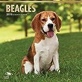Beagles Dog Wall Calendar 2018 CUTE {jg} Best Holiday Gift Ideas - Great for mom, dad, sister, brother, grandparents, grandchildren, grandma, gay, lgbtq.