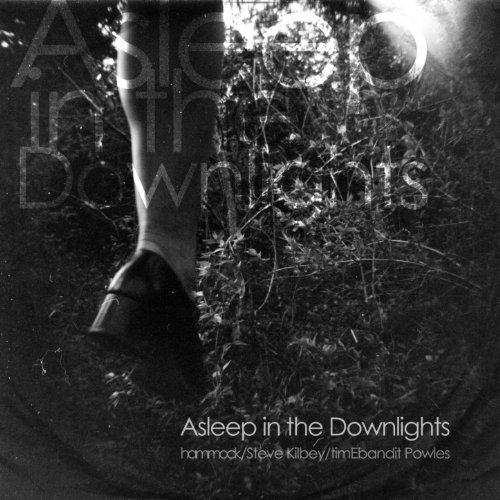 Asleep In The Downlights (Raising Your Voice Trying To Stop An Echo)