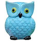customized coins - ZCHING Cute Owl Ceramic Piggy Bank Personalized Money Saving Bank for Kids Girls Nursery Gift Decor