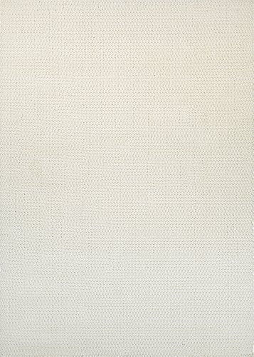 Couristan Natural - Couristan Natures Elements Collection Air Rug, Off White, 8 by 10-Feet