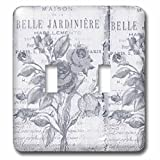 3dRose lsp_79075_2 Vintage Belle Jardiniere Botanical French Art Double Toggle Switch