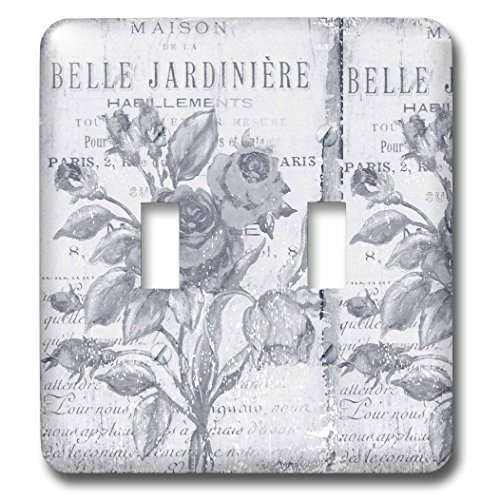 3dRose lsp_79075_2  Vintage Belle Jardiniere Botanical French Art Double Toggle - Switchplate Bella