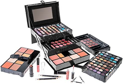 Amazon.com : SHANY All In One Makeup Kit (Eyeshadow, Blushes, Powder,  Lipstick & More) Holiday Exclusive - BLACK : Beauty
