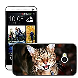 Hot Style Cell Phone PC Hard Case Cover // M00047010 pets portrait cat 1 animals // HTC ONE M7