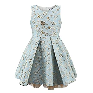 childdkivy Little Girls Clothes Party Dress Toddler/Kid (12(8-10year), Blue)